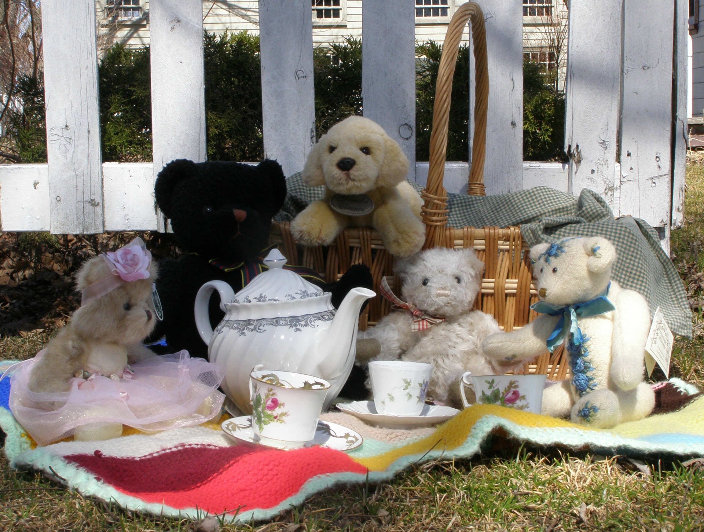 teddy_bear_picnic (1)